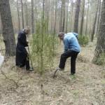 Мероприятие по озеленению территории храма